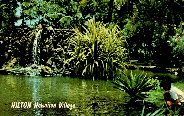 Japanese Pond Hilton Hawaiian Village Postcard